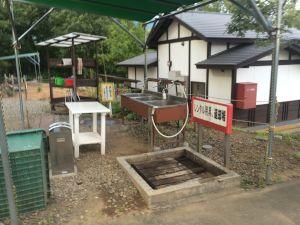 fukuiprefecturaldinosaurmuseum 17.49.45