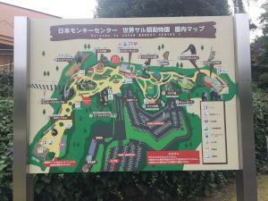 monkeypark-11-43-28