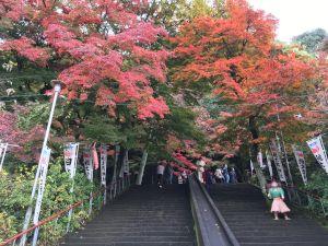 inuyama-11-27-30
